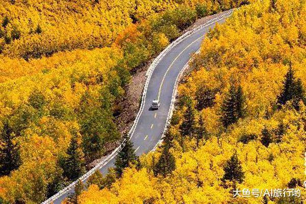 中国最美的几条自驾游公路, 一定要开上爱车去一次, 错过实在可惜